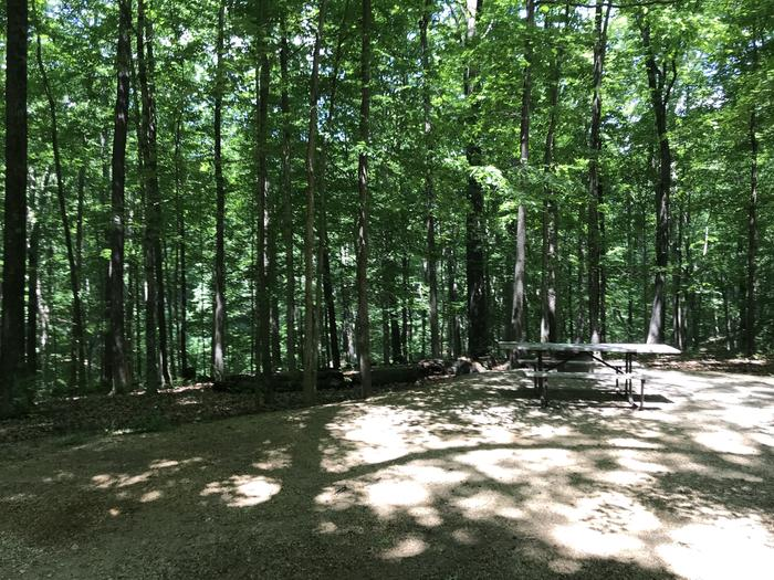 Beautiful ravine right directly behind the campsite makes for a nice peaceful relaxing