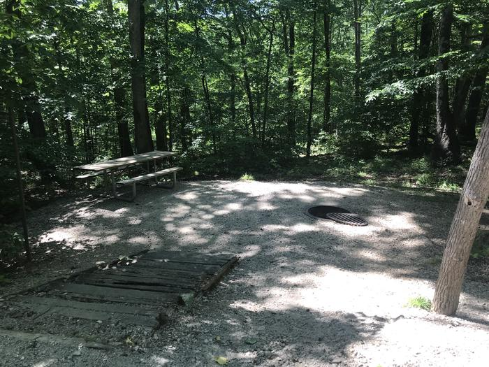 Spot for your tent your picnic table and your fire ring are on a lower level abouteight steps down