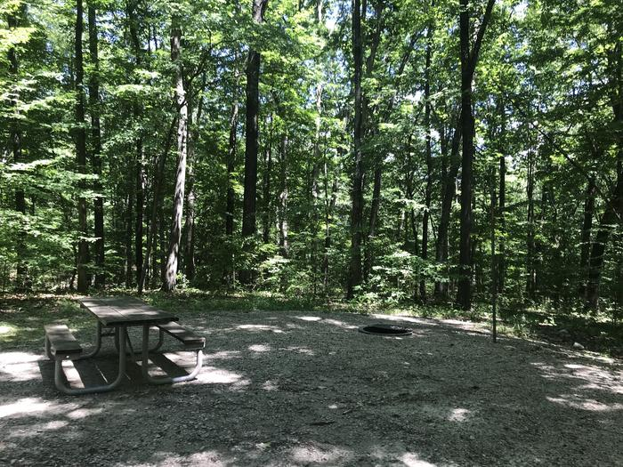 Very Nice grilling picnic table area