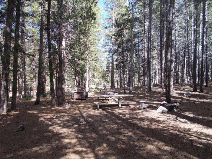 Tuolumne Campground 18' RV site
