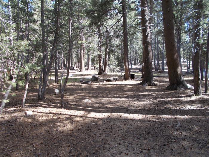 Tuolumne Campground 27' RV site