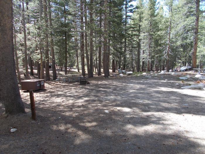 Tuolumne Campground 35' RV site