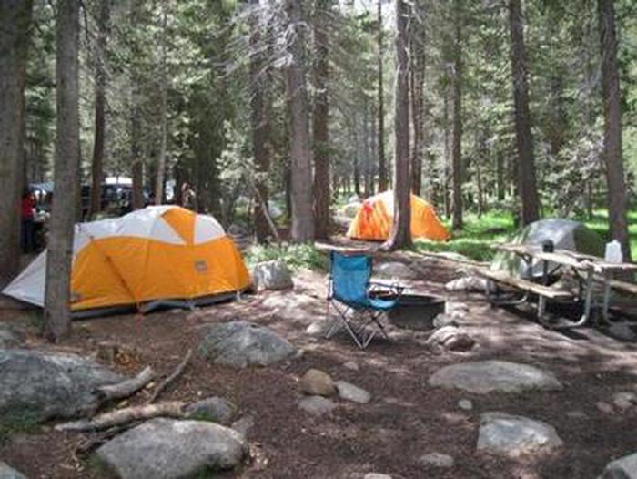 Tuolumne Meadows campground tent site