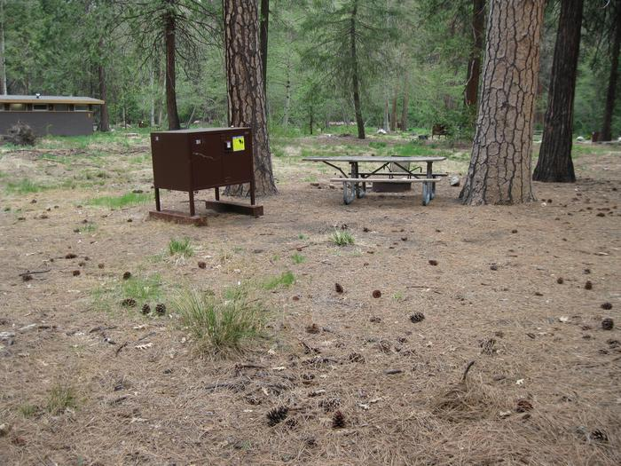 North Pines campground site 316 tent area