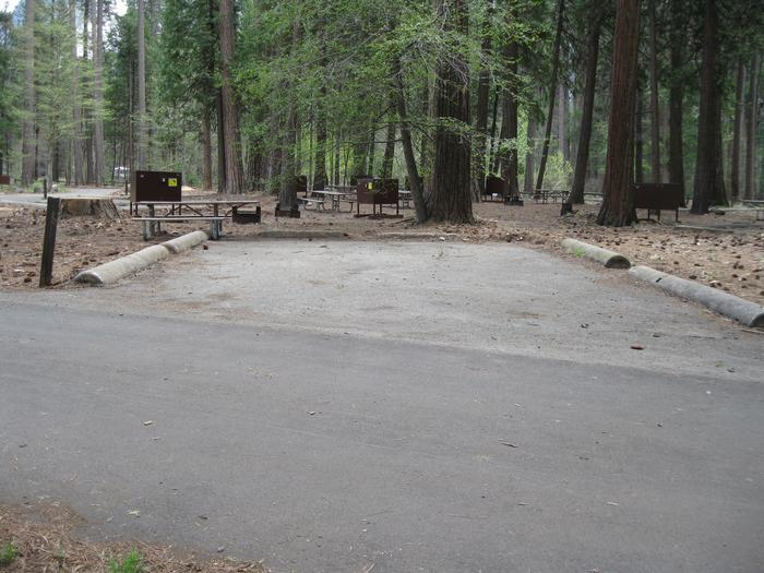 North Pines campground site 501 parking pad