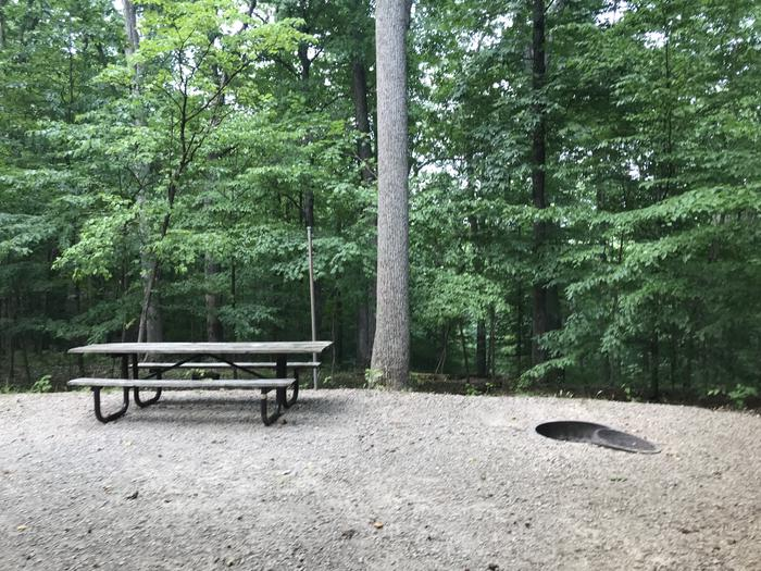 A nice picnic area with a very deep ravine right behind the site beautiful
