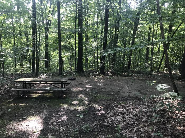 A great tent site picnic areas with a gentle slope down from the parking spot