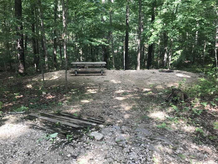 Seven steps down to a nice area for the fire ring the picnic table and your tent