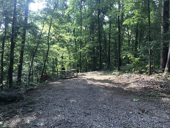 A good site with tent pad fire ring and picnic table right directly behind your parking area