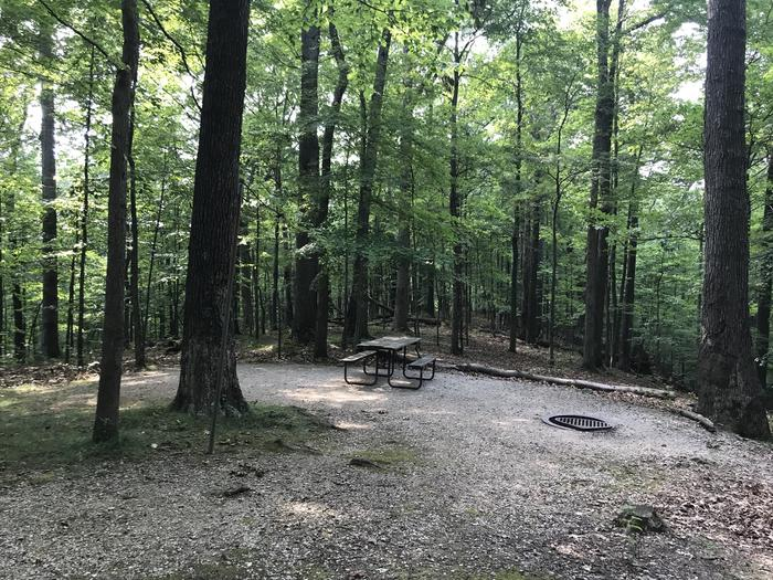 This is the last campsite on this walk in loop very nice got a Lotta words and ravines on two sides of you if you've got friends on 179 it's especially nice you're close to each other but your separate nice site