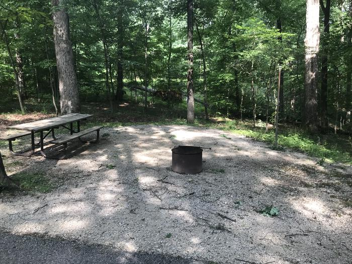A nice area for a tent or just for sitting around the campfire and enjoying a picnic