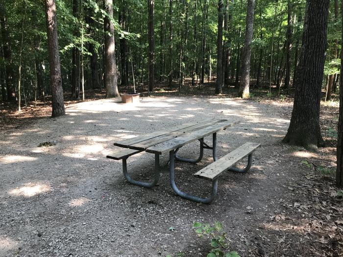 A large area for tent grilling picnic table fire ring and very peaceful around you