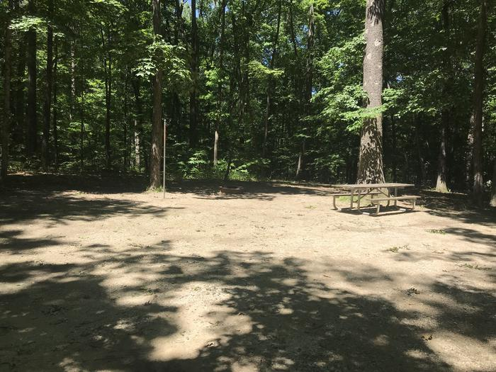 A large open area for your camping pleasures