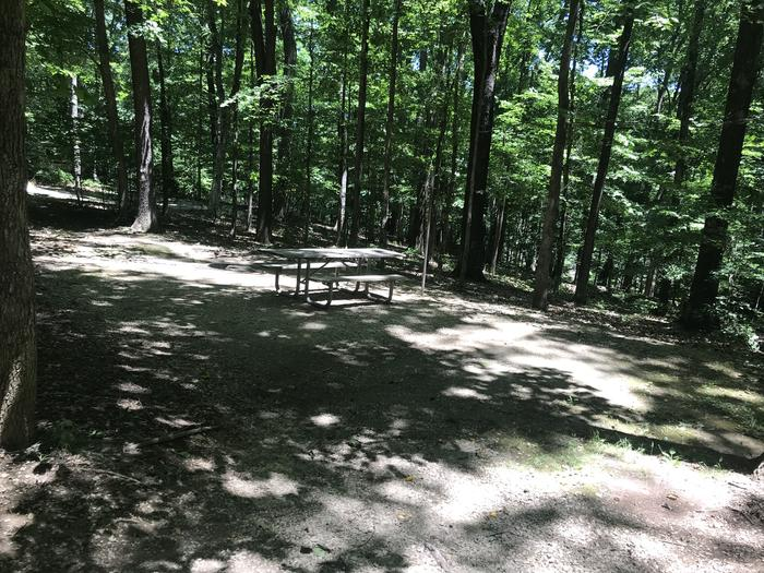 About a 2 inch drop off from the pavement to the gravel area with a gentle slope down to the picnic area and a tent pad