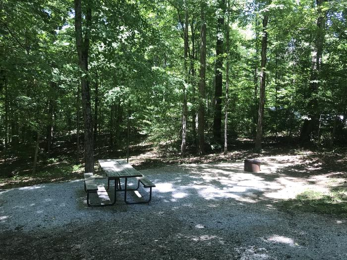 A very nice relaxing area for a tent pad or just sit around the campfire