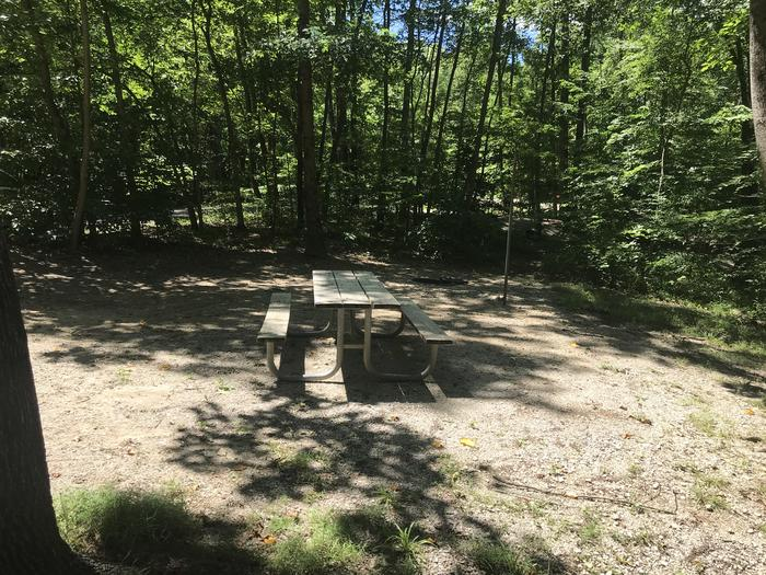 Good level spot for a tent or just toasting around the campfire