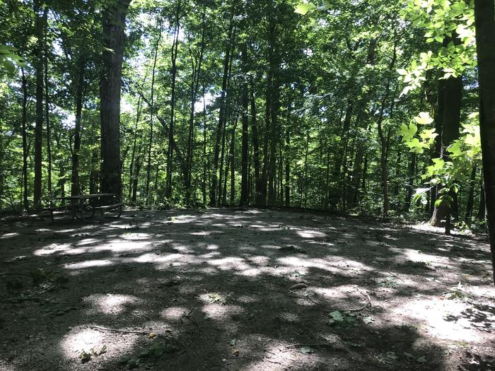 This is a great walk in sight it's at the end of the walk in loop and really secluded nice area for tents and just peaceful campfire sitting