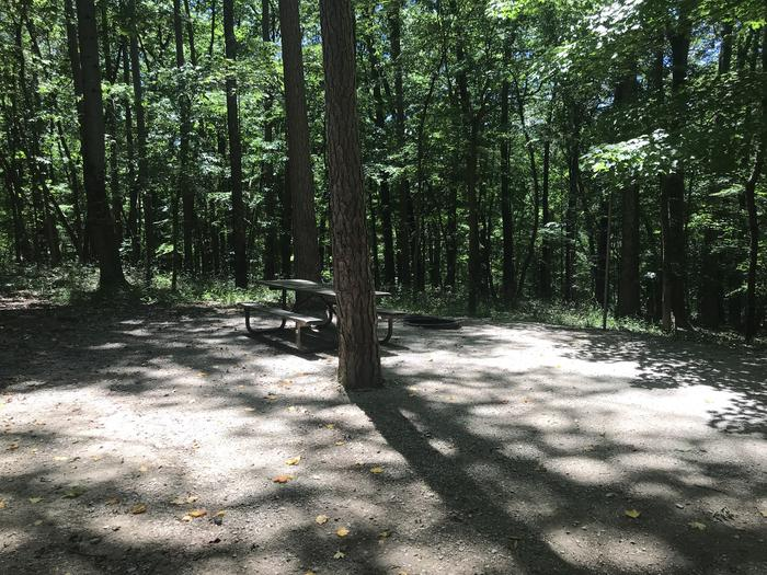 Beautiful tent pad area with a nice campfire ring area also