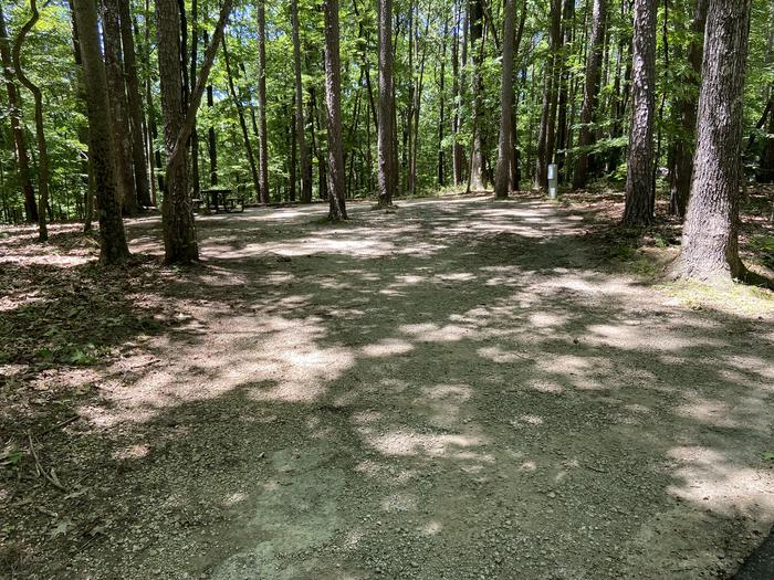 Large lot with trees on both sides. Be careful backing in