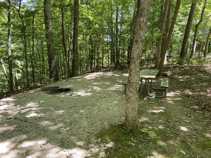 Picnic table and campfire is next to a beautiful ravine