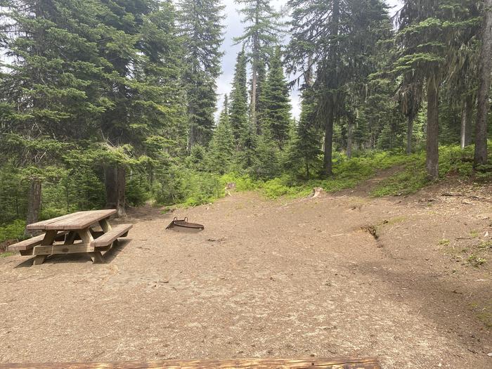 Campground #/4 area area