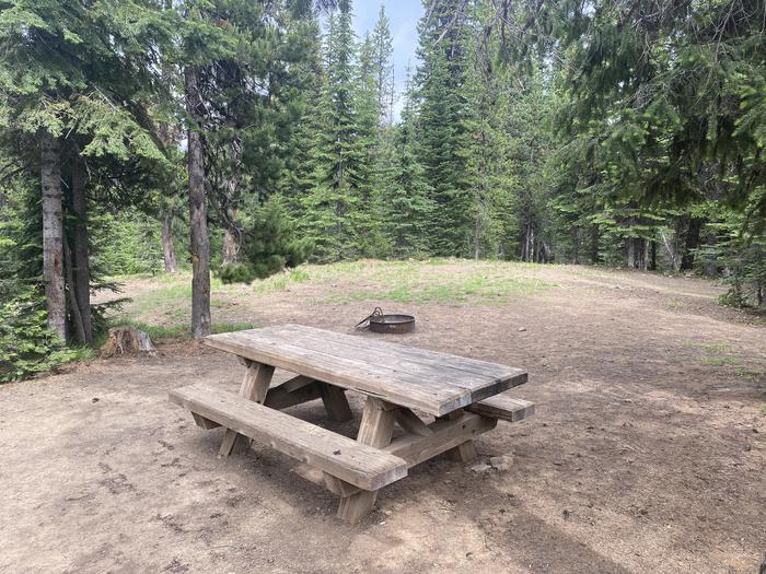 Campground #22 area