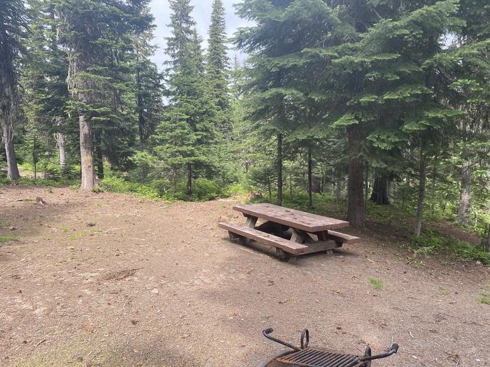 Campground #28 area