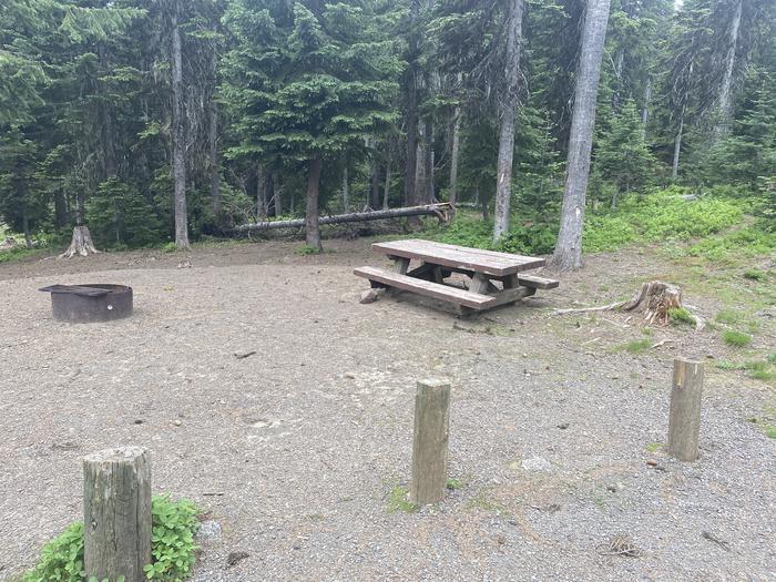 Campground #12 area