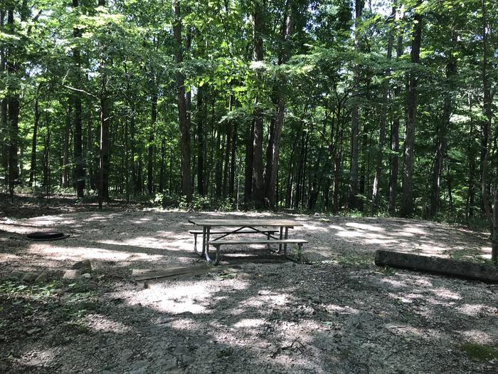 Four steps down to a beautiful tent pad and area to sit around your campfire ring