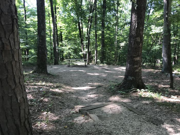 Great tent pad with good privacy three steps down to get to that area