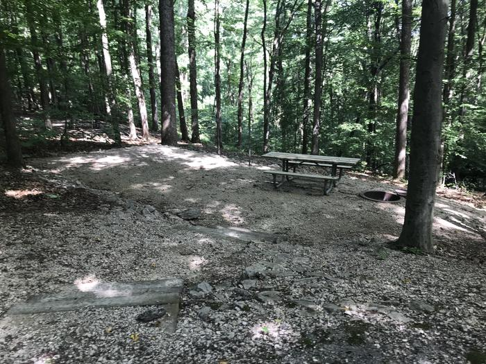 Seven steps down to your campfire ring picnic