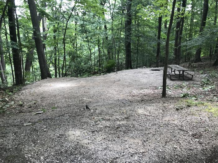 Three steps down to a nice tent pad area with a great fire ring and picnic table