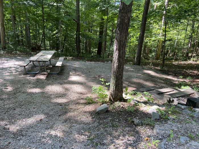 Steps lead down to the picnic table and fire ring