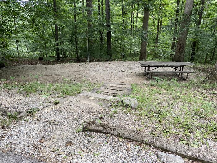 Steps lead down to table and tent area . Overlooks wooded ravine