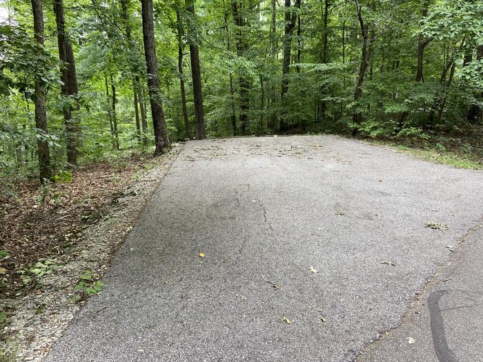 Paved drive above tent and table area