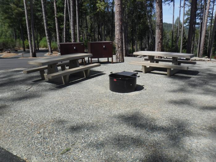 Site 1D2 tables, 2 bear boxes, 1 fire ring.