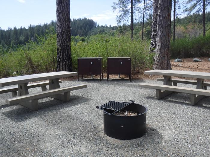 Site 9 Double2 bear boxes, 2 picnic tables, fire ring