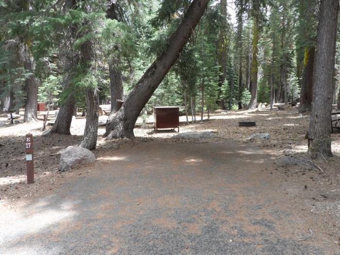 Site E17Site, Loop: Site E17, Loop E