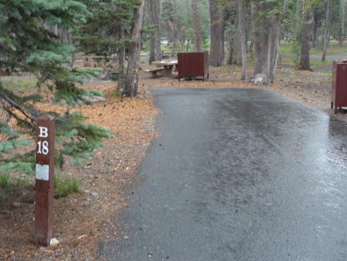 Site B18Site, Loop: Site B18, Loop B