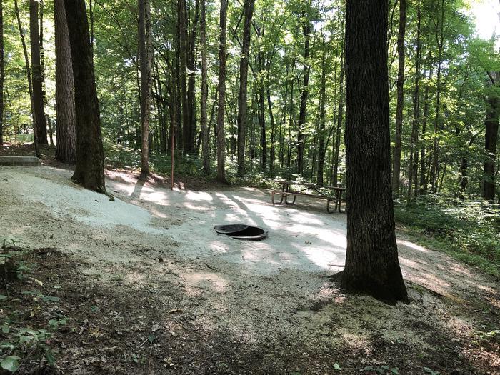 Jackpine 10 view of campsite