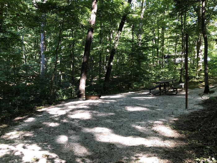 Jackpine 9 view of campsite