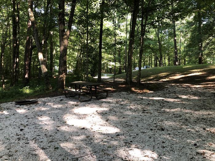 Jackpine 11 campsite