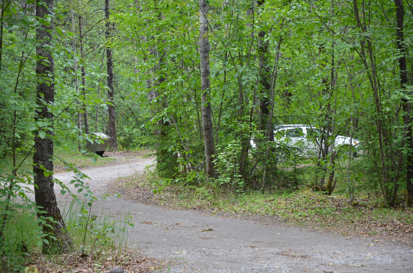 Nestled in the treesThe Dyea Campground is nestled in the trees along the banks of the Taiya River.