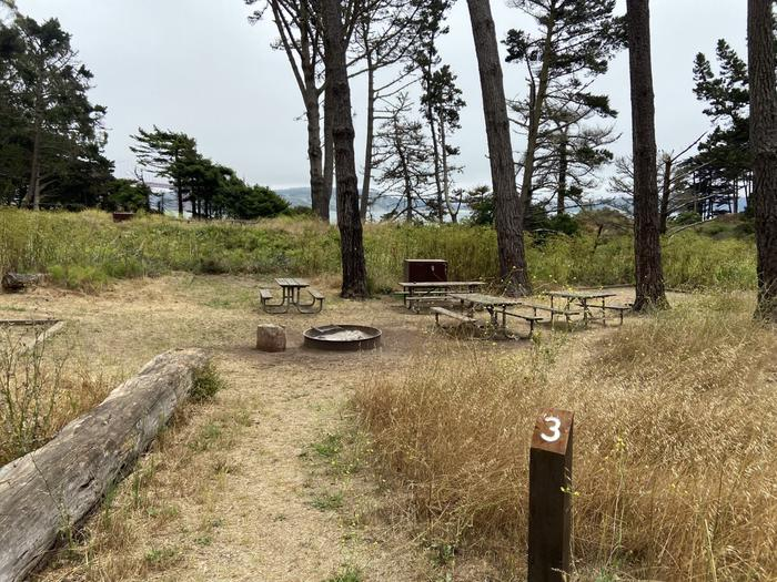 Site 3 is marked with a sign post that says '3' and has four picnic tables, tent pads, and a food locker.Site 3 in July, marked with a sign post.