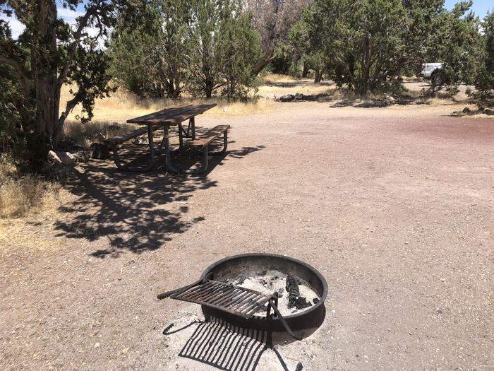 Campsite 5 Picnic Table and Fire Ring