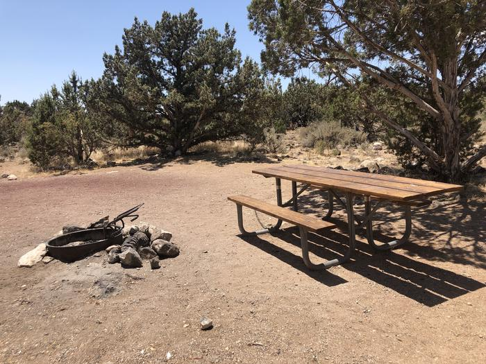 Picnic Table and Fire RingCampsite 14 Table and Fire Ring
