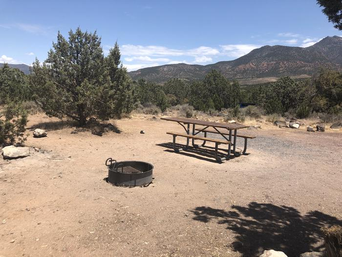 Picnic Table and Fire RingPicnic Table and Fire Ring, campsite 12
