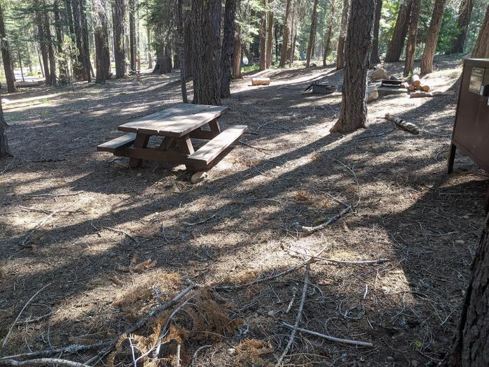 Little Beaver Site #2 Photo 2Site #2 with bear box, picnic table, fire ring, and grill in view
