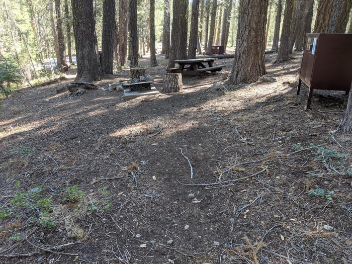 Little Beaver Site #4 Photo 2Side-slope view of Site #4 with picnic table, bear box, fire ring, and grill in view