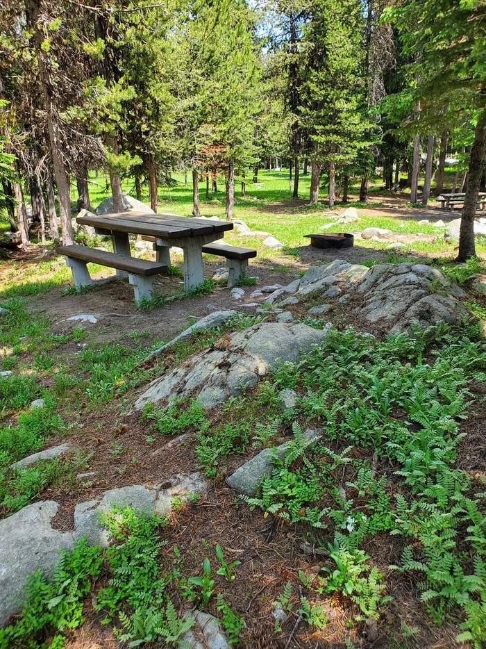 Site 5 picnic tableSite 5